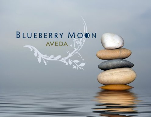 Blueberry Moon Salon Spa - Chicago, IL